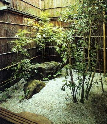Ботанический сад Ганновера